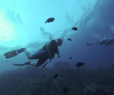 Scubadive Thailand 2016